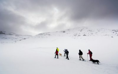 Snowshoeing activity with blind participants